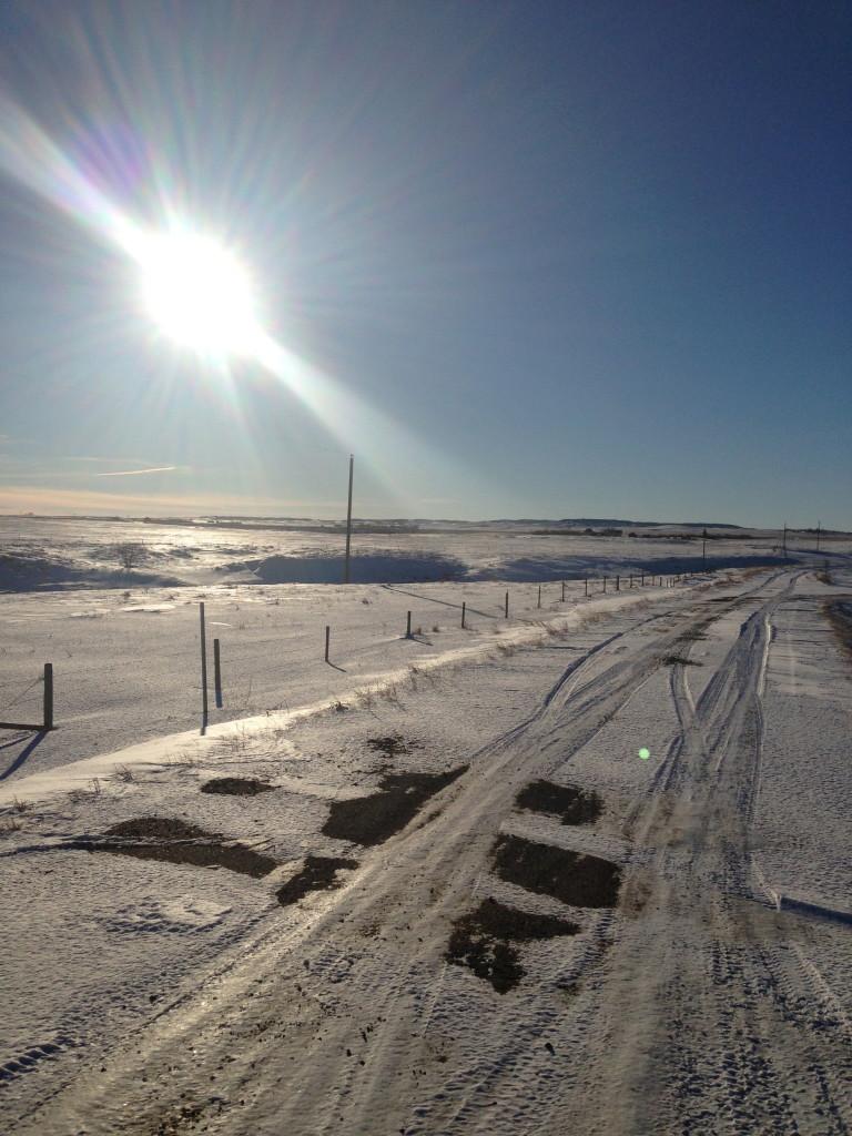 Saskatchewan Light - Colleen Friesen