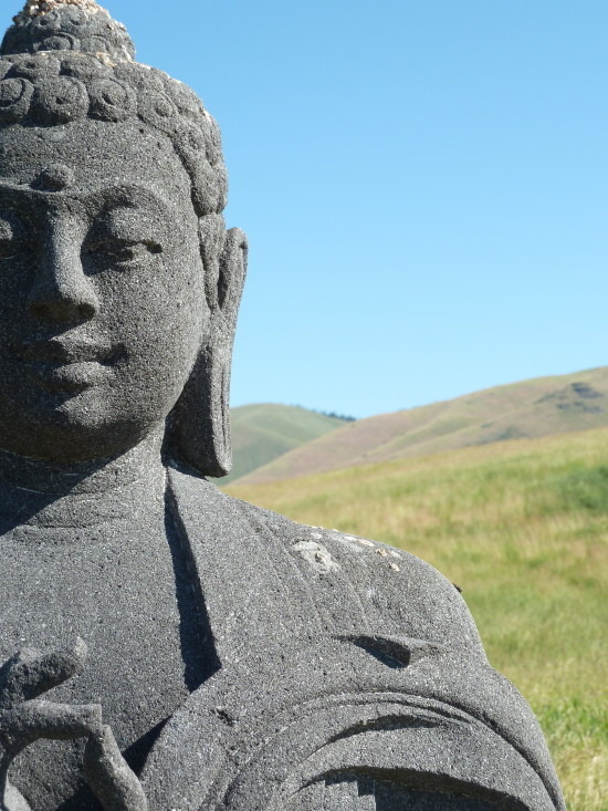 Montana Buddha - Colleen Friesen